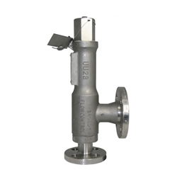 Broady Safety Relief Valve Type 3600